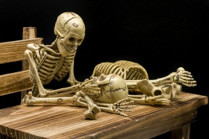Still life of model skeleton in Halloween concept