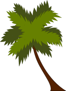 palm-tree-md