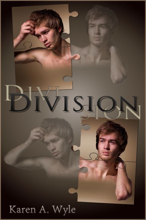 Division ebook cover, lower res for web