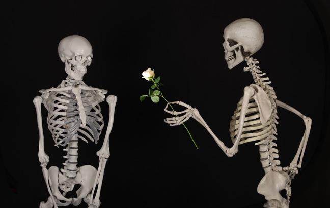 skeletal-601213_960_720