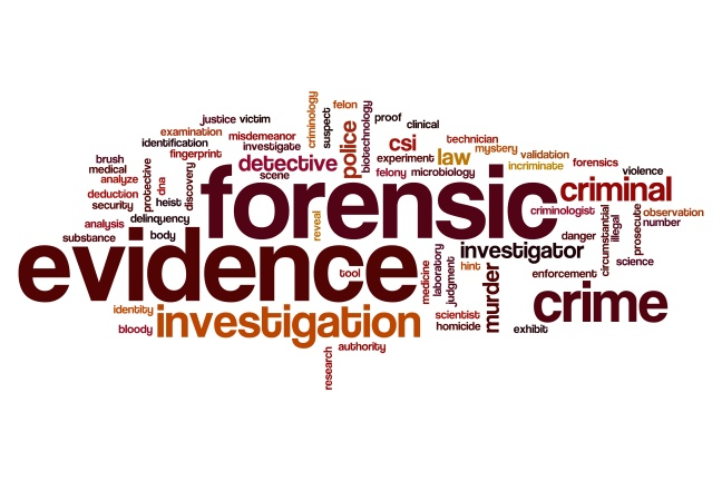 Forensic evidence word cloud