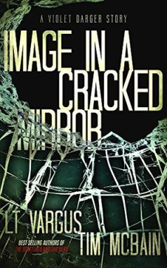 Image in a Cracked Mirror LT Vargus