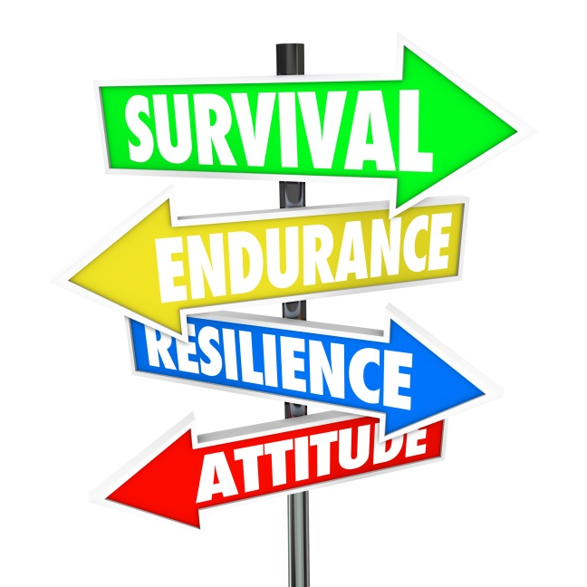 Survival Endurance Resilience Attitude road signs arrows directi