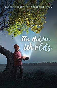 Hidden Worlds image