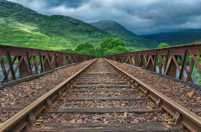 train tracks with greenery image