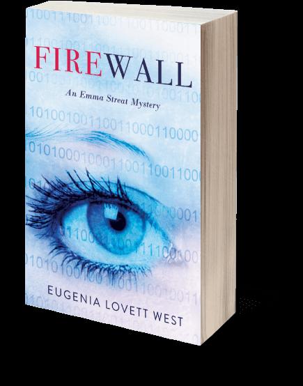 Firewall book image at angle