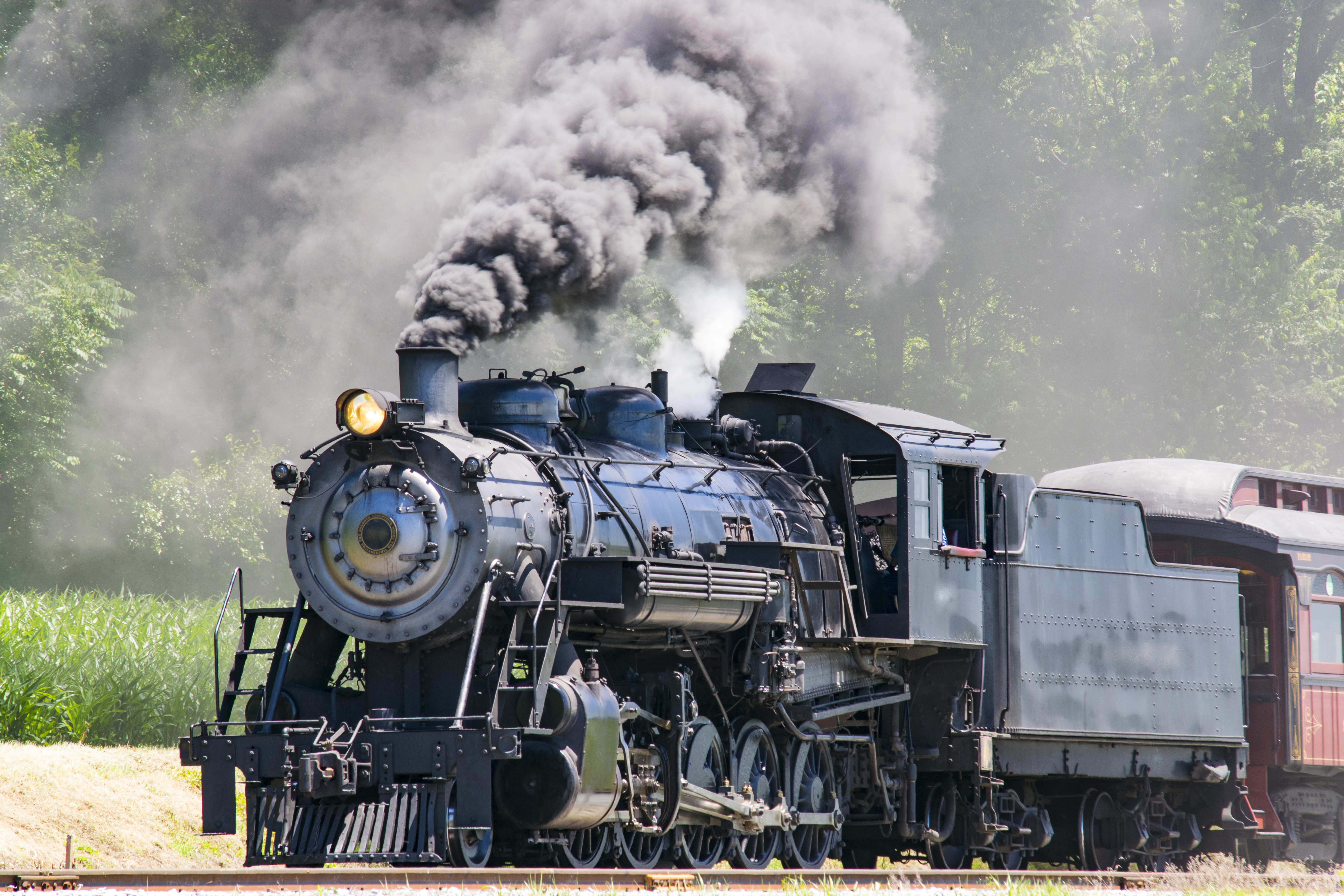 Steam Passenger Train Pulling into Picnic Area