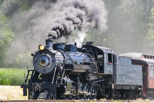 Steam Passenger Train Pulling into Picnic Area